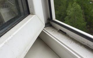 Зачем добавляют перекись водорода при мытье окон