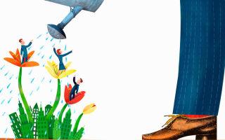Социально-бытовые стимулы