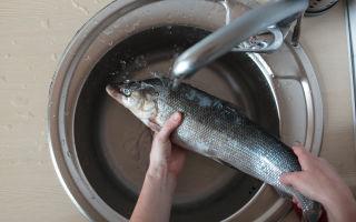 Как избавиться от запаха рыбы на кухне