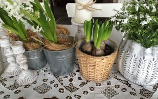 8 советов для декора Вашего дома