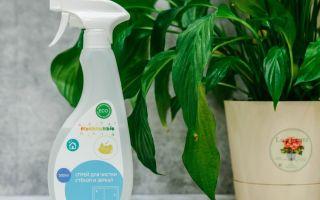 Эко-средства для уборки: плюсы и минусы