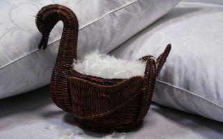 Как почистить перьевые подушки в домашних условиях
