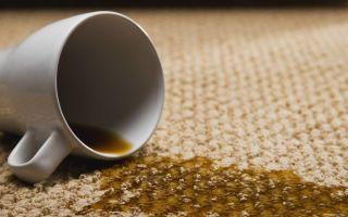 Выведение пятен с ковров