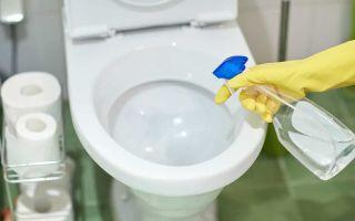 Средства для чистки унитаза от налета и ржавчины