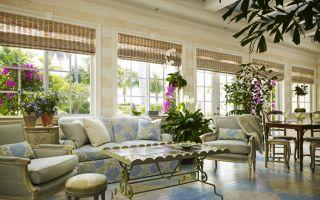 Живые растение в гостиной — правильное расположение и уход за ними