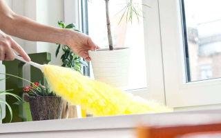 Как выбрать подходящее средство от пыли для регулярной уборки