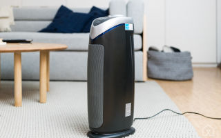 Зачем нужен ионизатор и увлажнитель воздуха в квартире