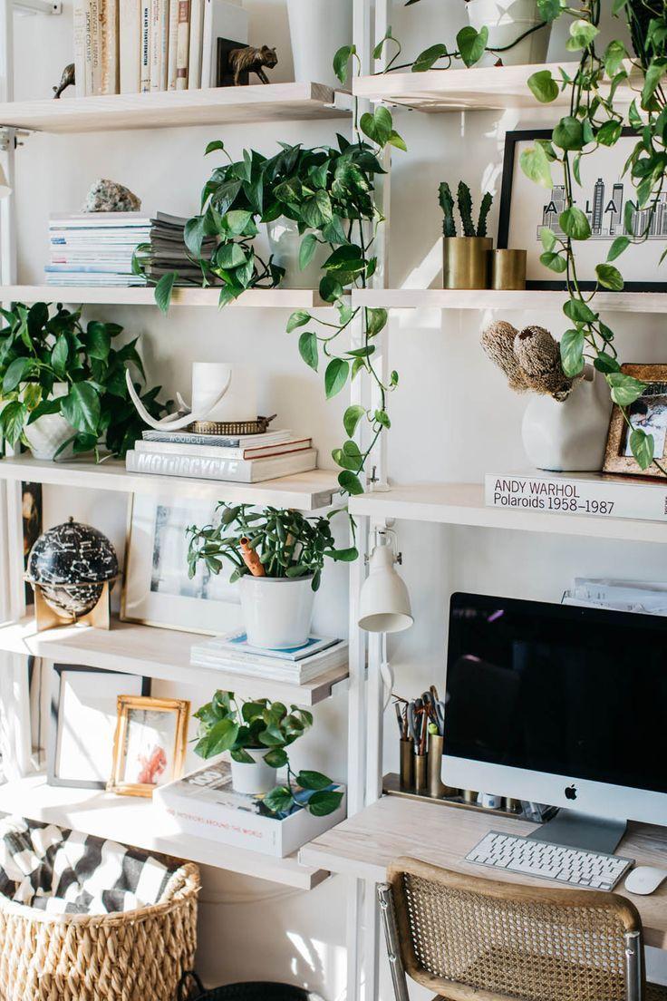 Украшение гостиной при помощи растений