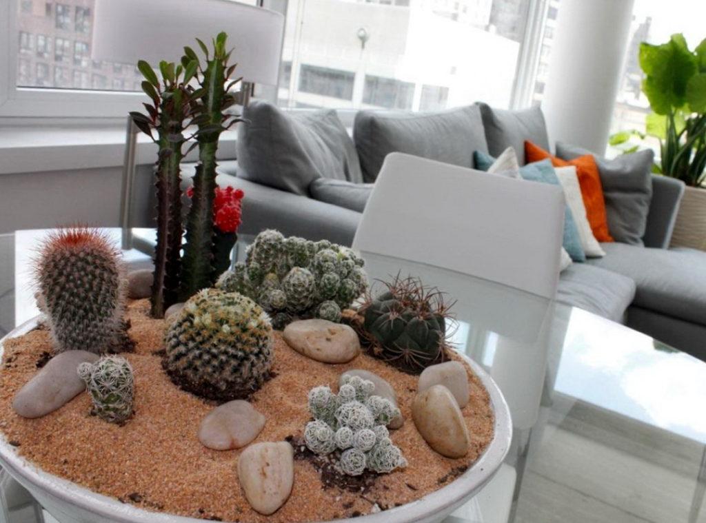 Живые растение в гостиной - правильное расположение и уход за ними
