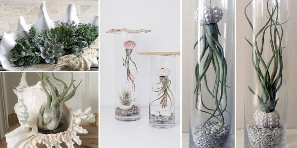 Выбираем цветы для украшения интерьера