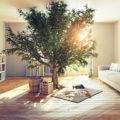 Как организовать чистоту в доме с мининимумом бытовой химии