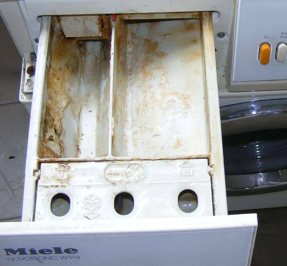 Почему из стиральной машины может неприятно пахнуть и как этого избежать