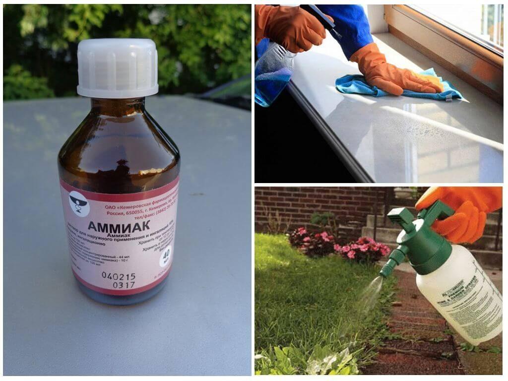 7 простых домашних средств, которые заменят бытовую химию