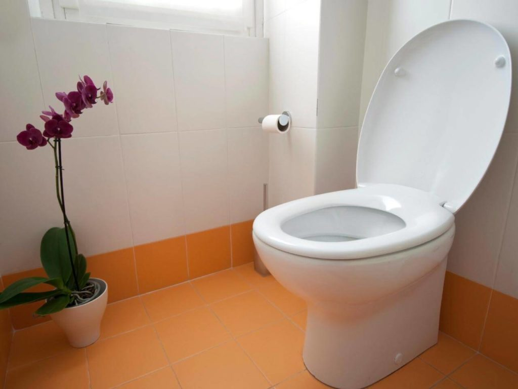 Как легко отмыть унитаз от налета и желтизны