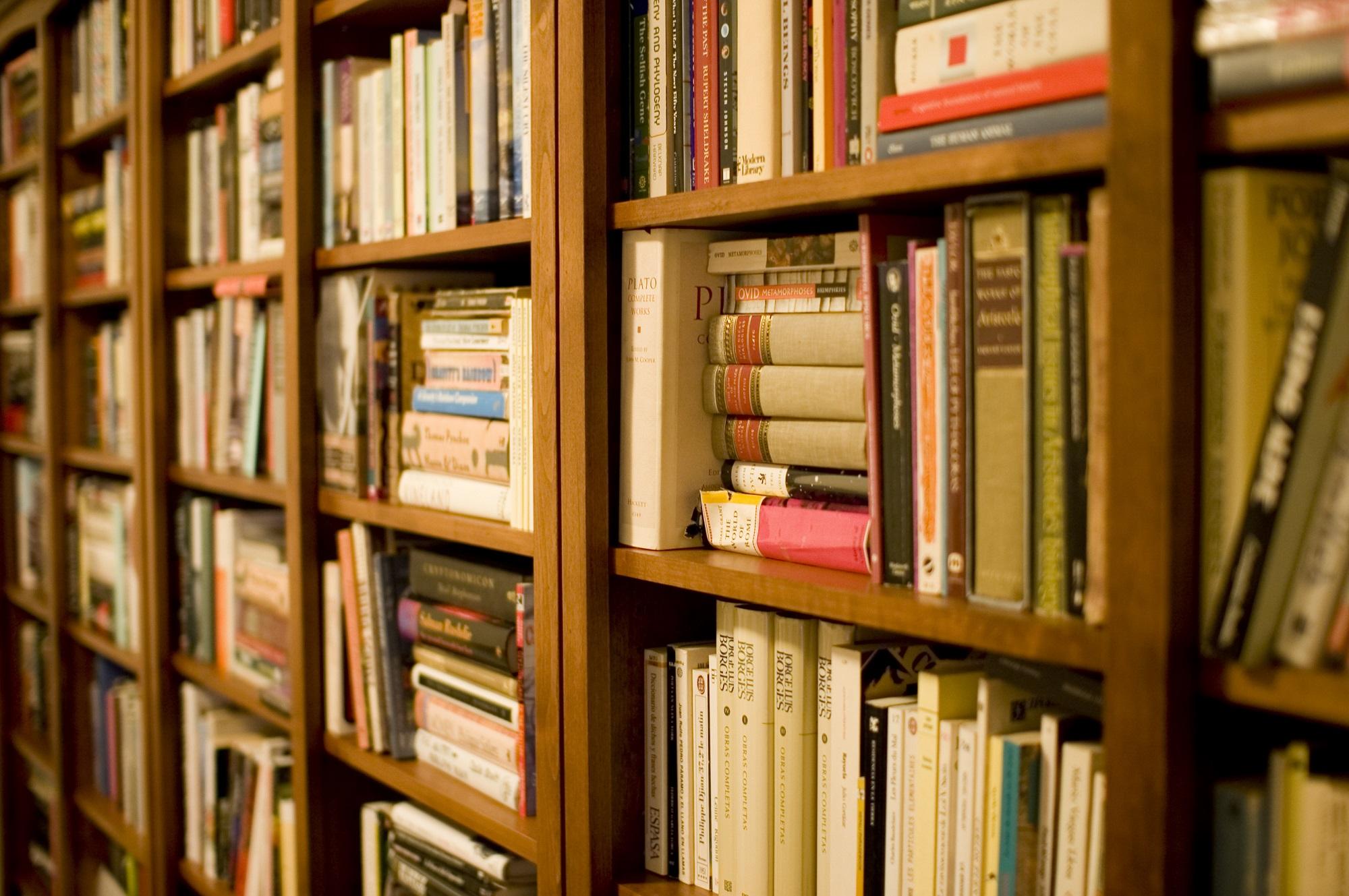 Картинка много книг и журналов