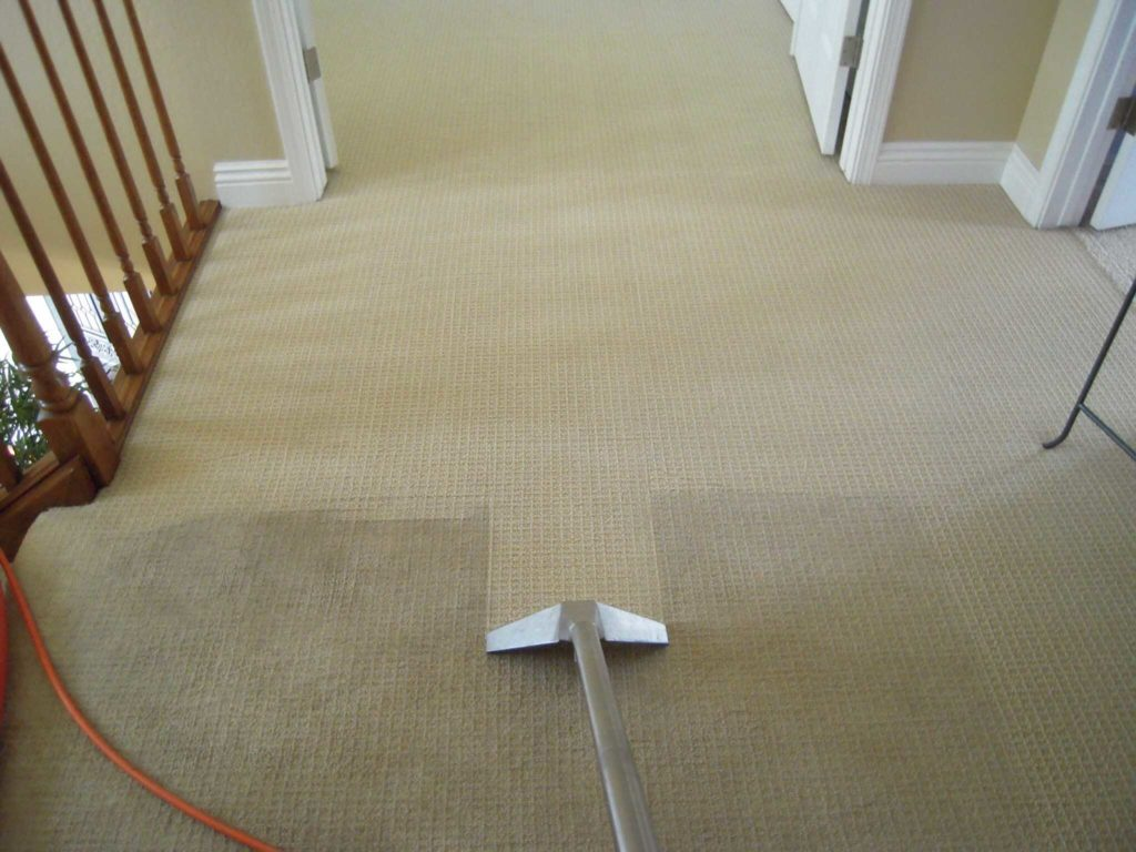 Как самостоятельно провести сухую чистку ковров